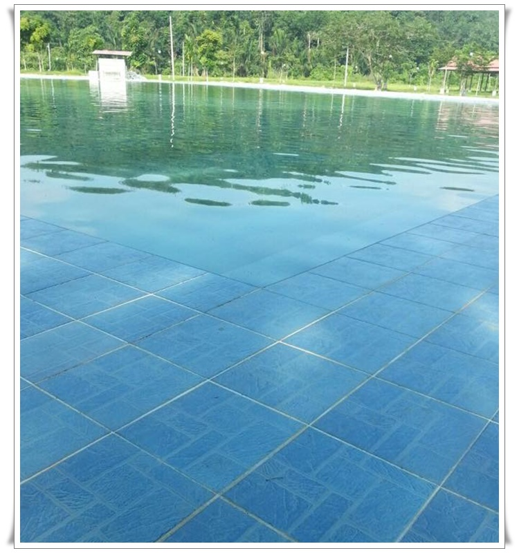 Rantau eco park swimming pool rantau eco park Environmentally sustainable swimming pools