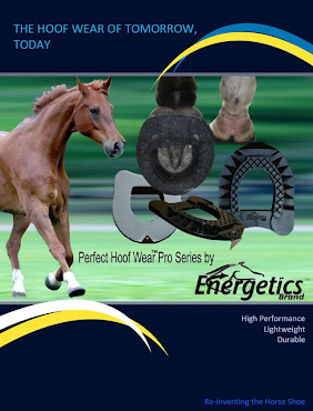 Energetics Perfect Hoof Wear