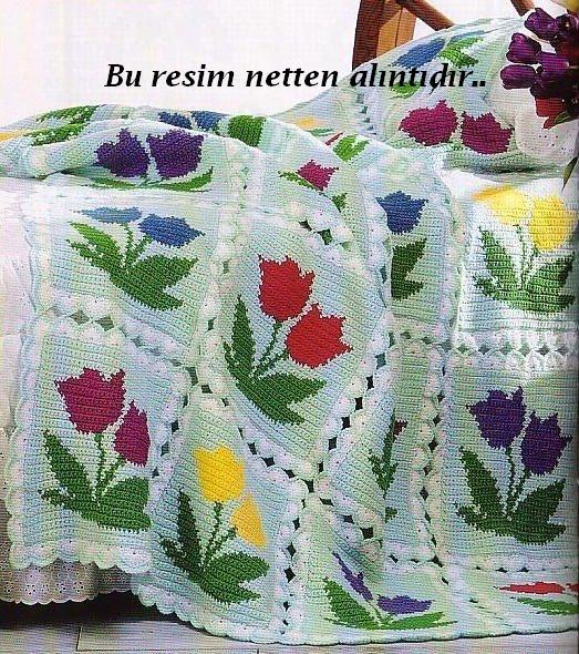 http://4.bp.blogspot.com/-mhDfvNrlg_Q/T8hlEWGUjQI/AAAAAAAAECw/OKlfikSzAHU/s1600/tulip.jpg