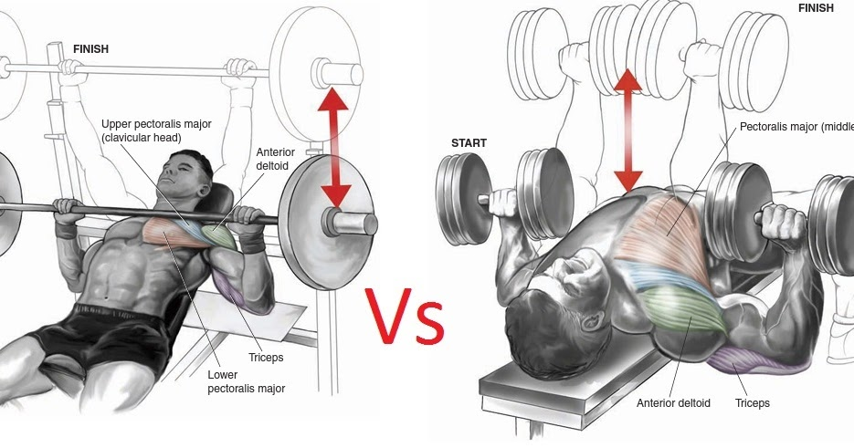 7 Reasons Dumbbells Are Better Than Barbells