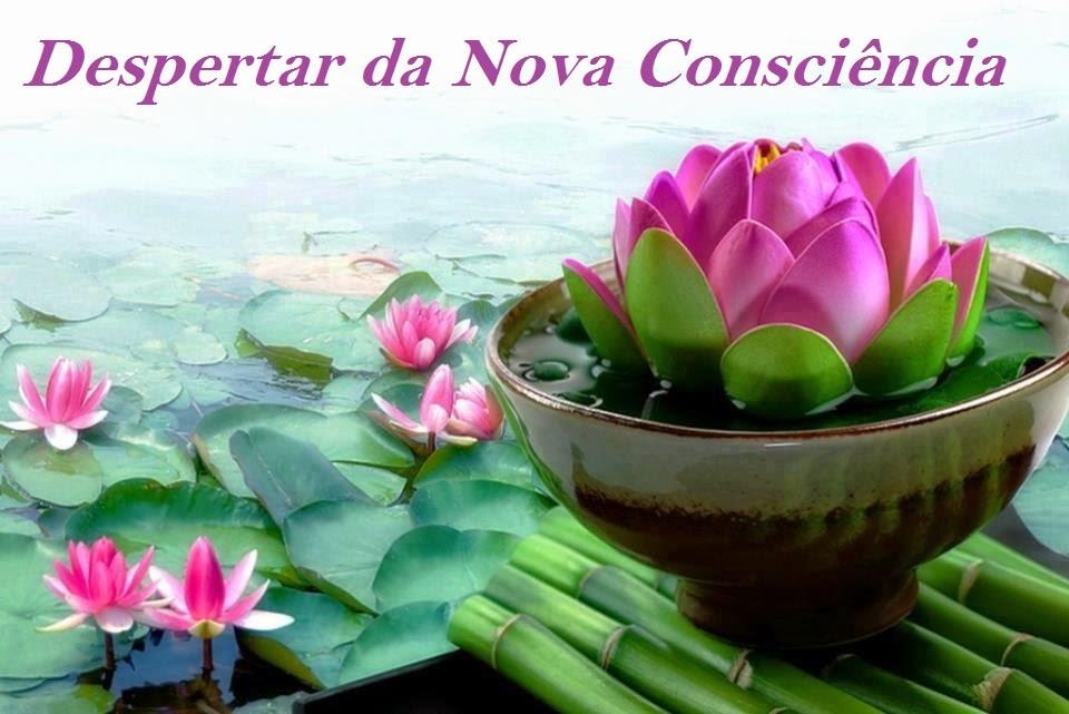 Despertar da Nova Consciência