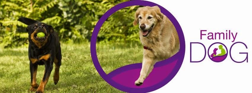 Family DOG -Tu tienda canina