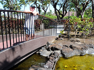 Keoki at fish ponds of Mauna Lani Bay Hotel