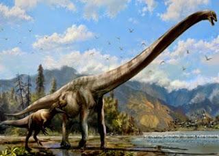 Nuova specie dinosauro dal collo lungo in Cina