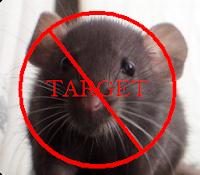 Cara Usir Tikus dengan Kopi Bubuk