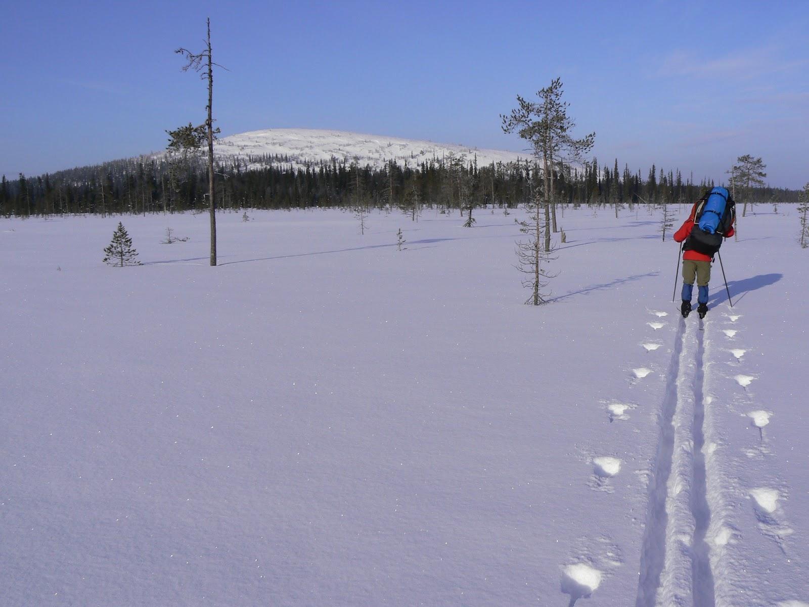 Itäkaira-2008-03