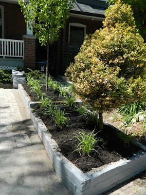 The Pocket front garden renovation after  Paul Jung Gardening Services Toronto