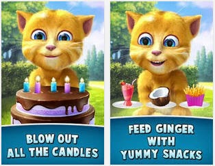 Organizing a birthday party for Ginger Cat 2