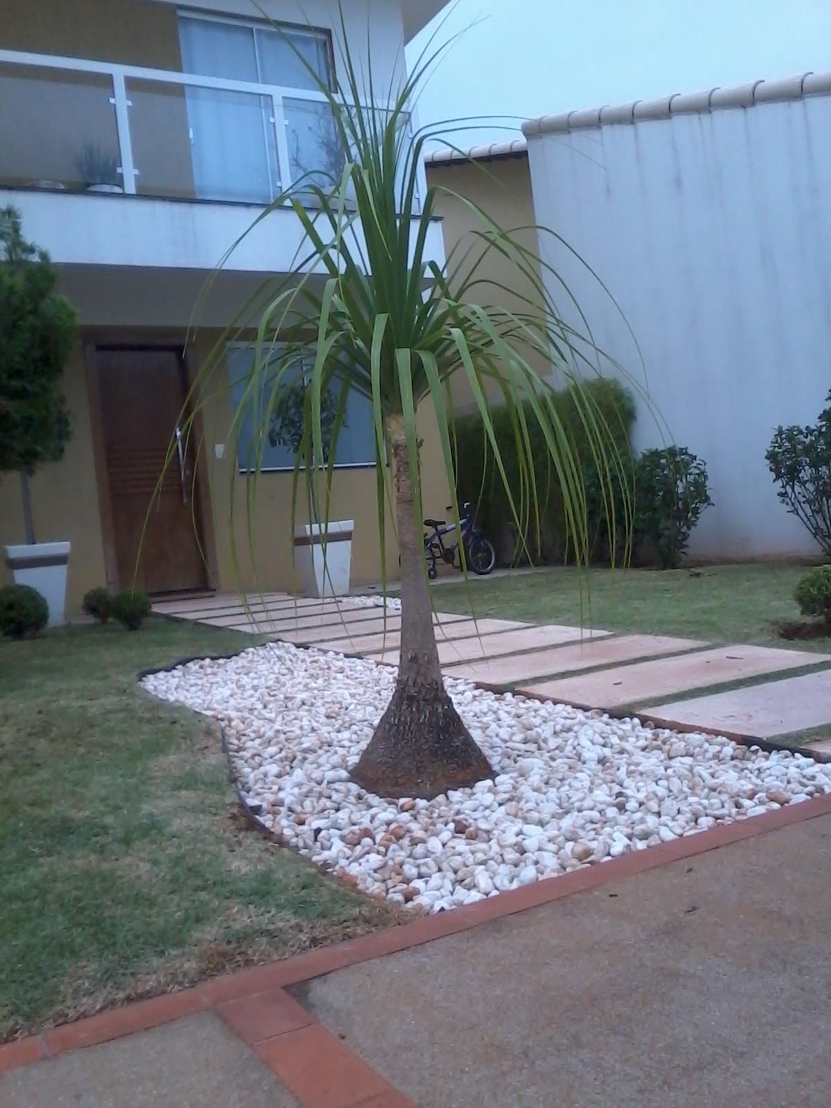 pedras jardim externo : pedras jardim externo: elefante e pedras brancas para criar um destaque este jardim externo