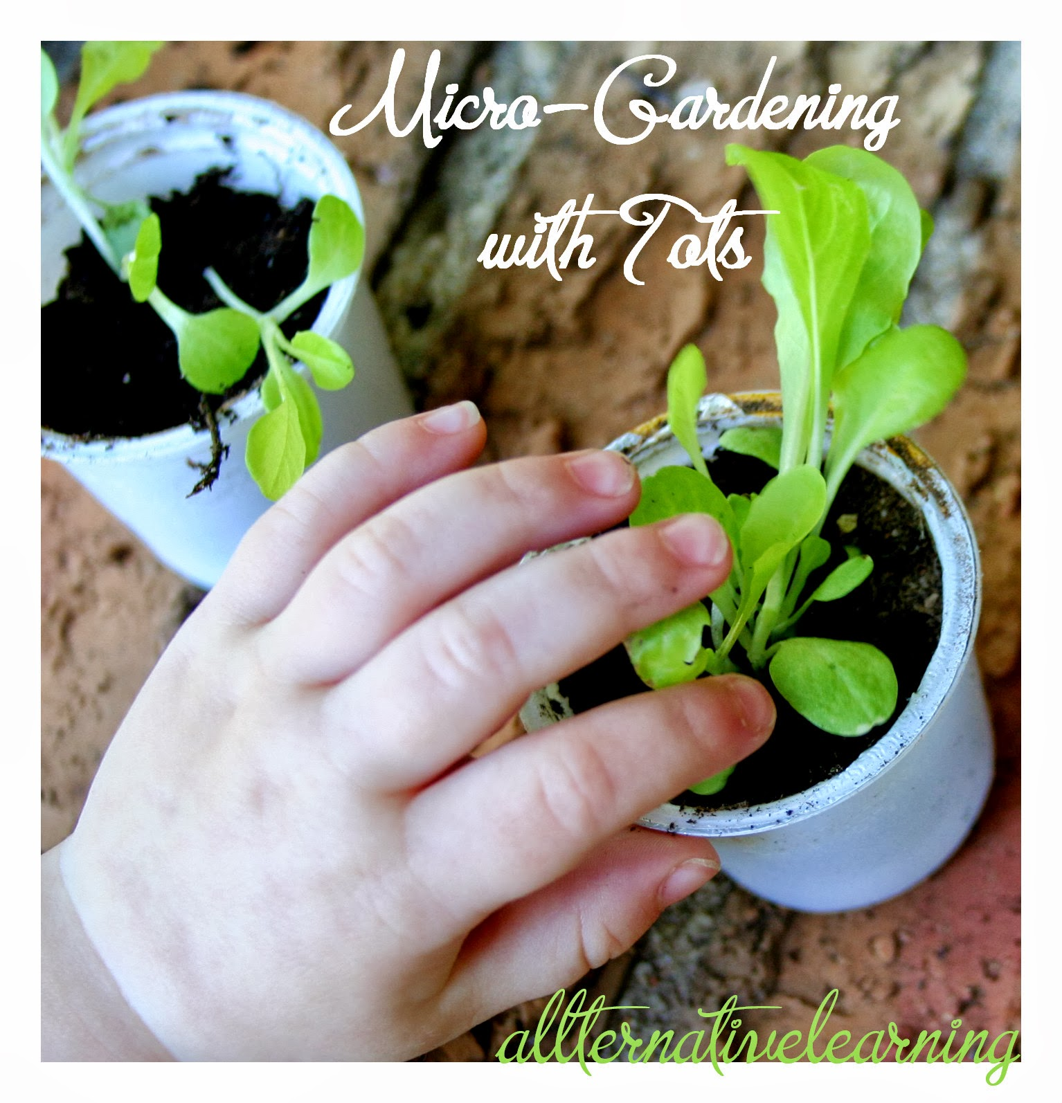 gardening with toddlers and kids