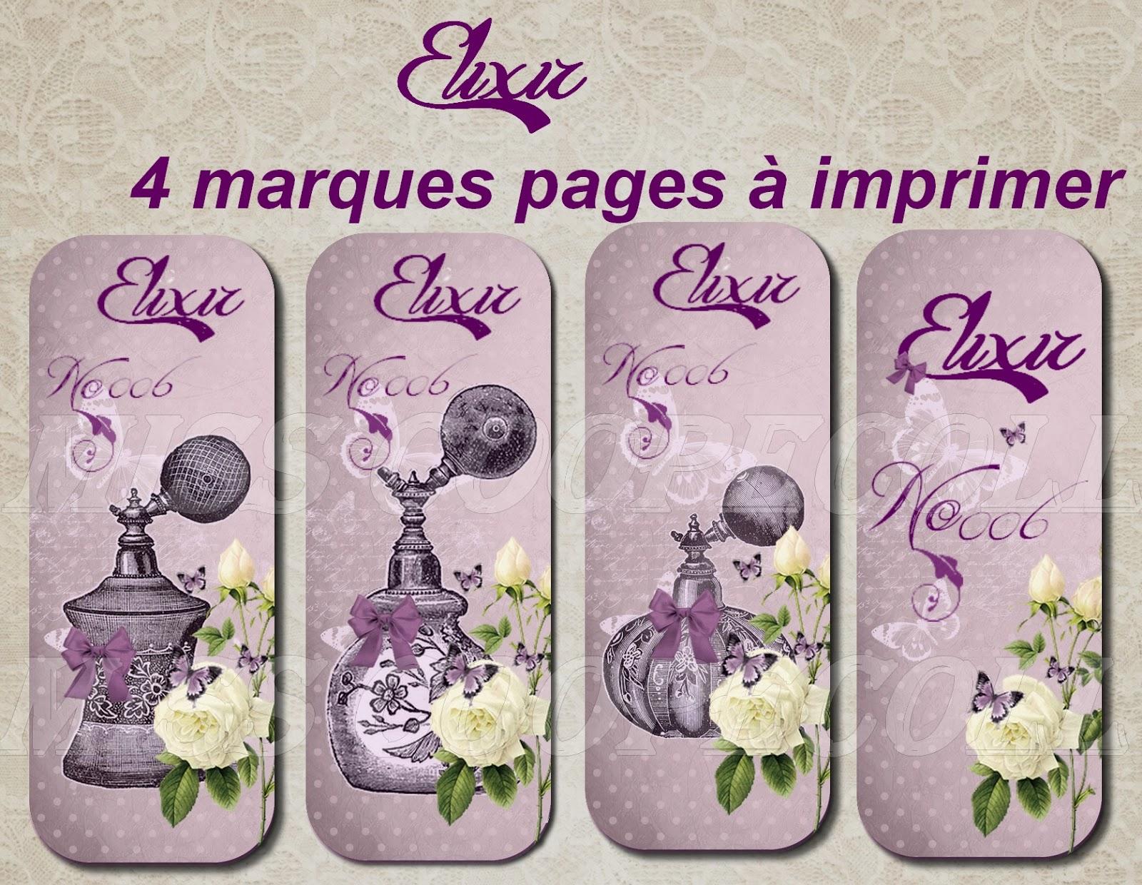 Extrem Miss Coopecoll Fée des bricoles: Sautoir Elixir thème parfum et  EW15