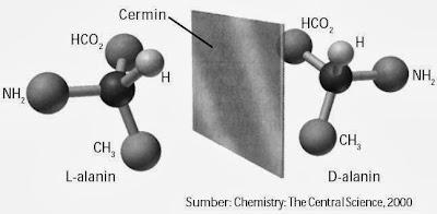 Alanin memiliki atom C kiral. Lalanin dan D-alanin pada cermin tampak sama, seperti tangan kiri dan tangan kanan yang berhadapan.