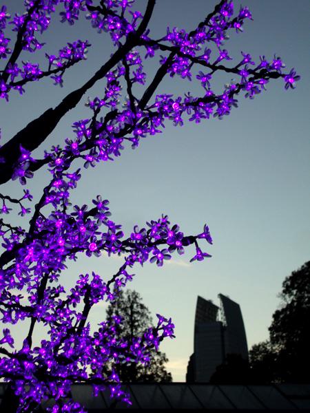 wanderlust ATLANTA Garden Lights Holiday NightsEven Better