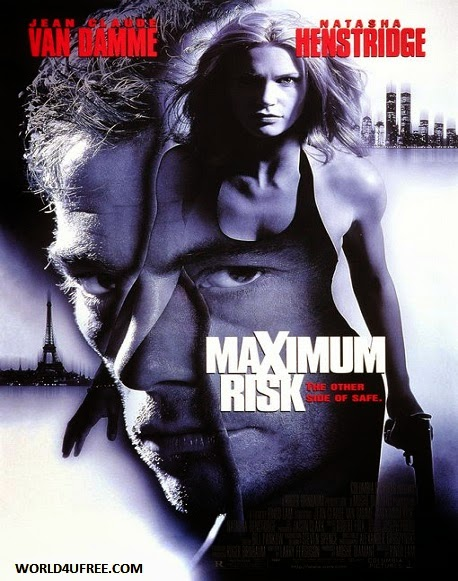 Maximum Risk 1996 Hindi Dubbed Dual DVDRip 300mb