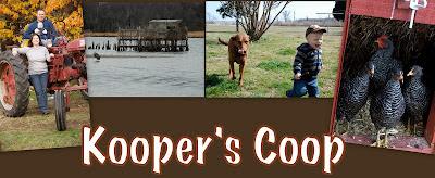 Kooper's Coop