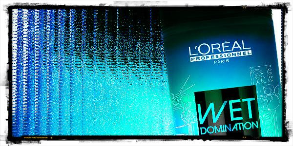 L'Orél Professionnel Wet Domination