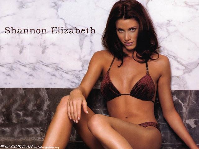 Shannon Elizabeth sexy in bikini
