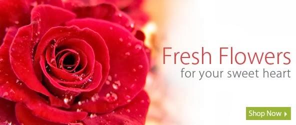 http://www.fnp.com/valentine/