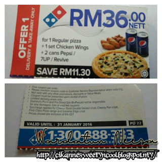 Voucher offer Domino's