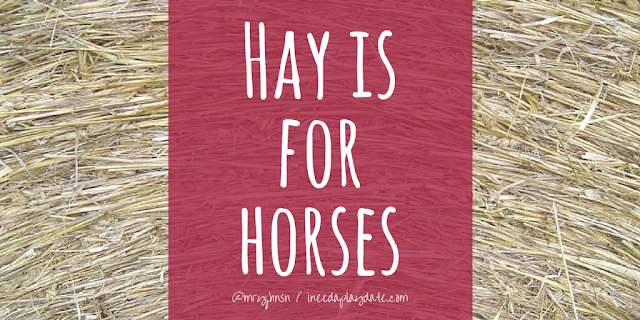 Hay is for Horses | 8 Sayings That Will Actually Have my Kids Laughing When I'm Dead