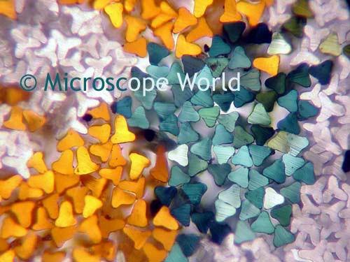 200x Magnified Carpet Fibers