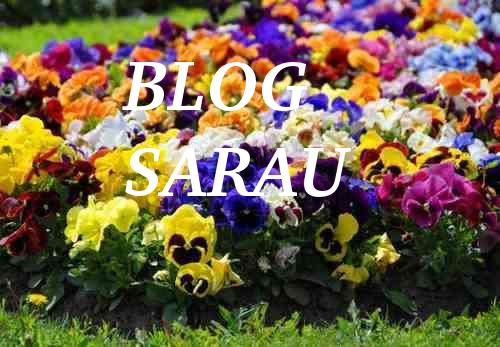 Blog Sarau - Música, livros, poesias famosas.