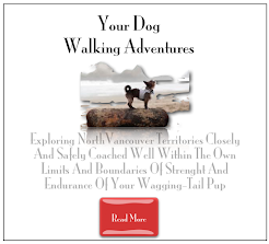 Your Ultimate Dog Adventures