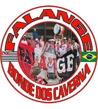 Falange Tricolor
