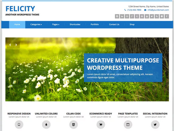 Felicity Wordpress theme