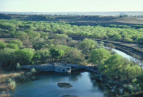 Rio Grande Nature Center and Preserve