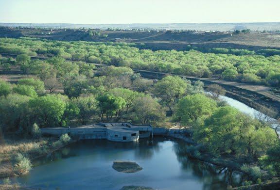 Rio Grande Nature Center and Preserve