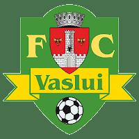 Rezumat FC Vaslui Petrolul Ploiesti 1-1 08.11.2013