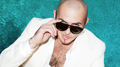 Great looks Pitbull