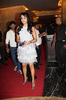 Trisha at SIIMA Party in a silver colored furry gown