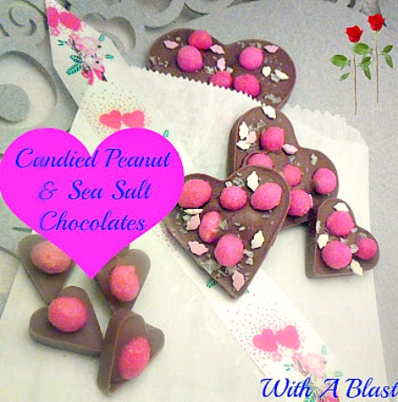 Candies Peanut & Sea Salt Chocolate www.withablast.net