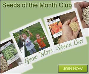 Seeds of the Month