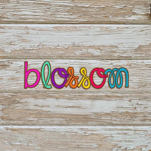 http://4.bp.blogspot.com/-mmtozYwze5E/VTA15WnRljI/AAAAAAAALgg/rPgyZzcAsTU/s1600/BlossomAP.jpg