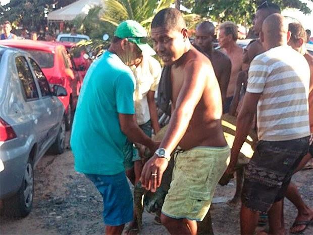 Sete homens ajudaram a carregar animal até veículo para ser transportada (Foto: Eric Miranda/G1 BA)