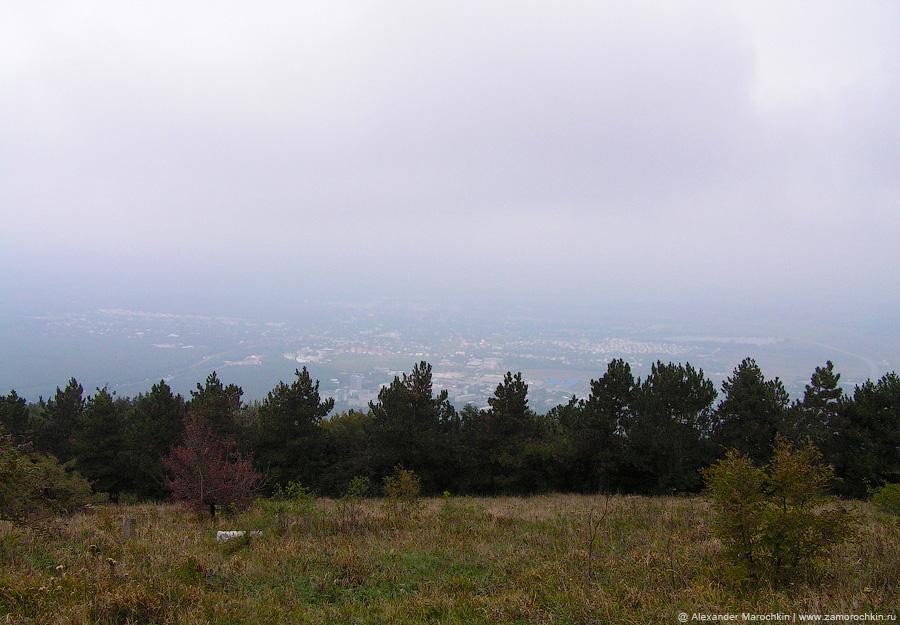Лесной массив на склоне горы Машук в Пятигорске