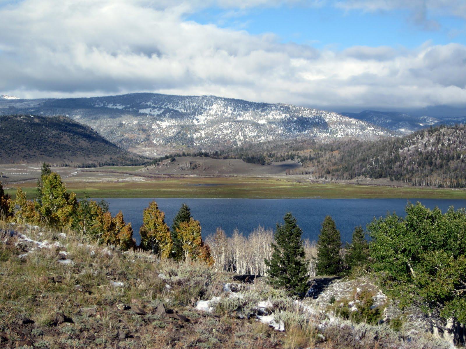 Journeys fish lake utah cabin for Fish lake utah