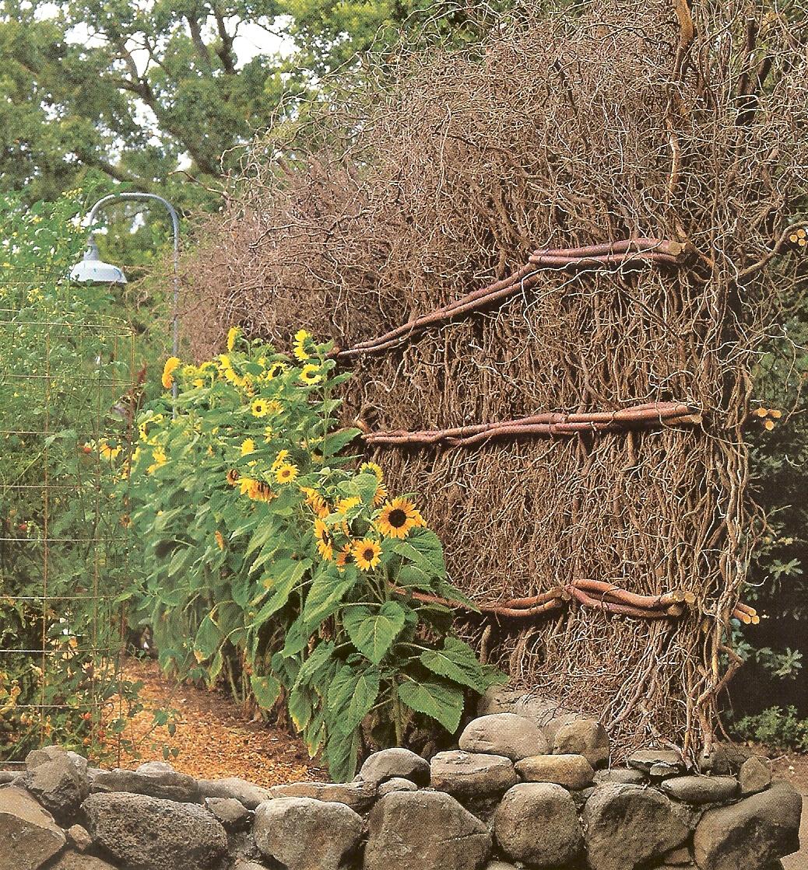 A.J.Barnes: Garden Ideas