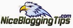 Nice Blogging Tips