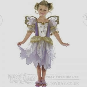 http://www.toyday.co.uk/shop/party/dressing-up/fairy-fancy-dress-costume/prod_4707.html