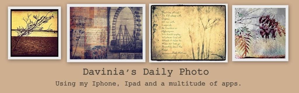 365 Photos