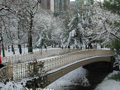 Christmas in New York Central Park