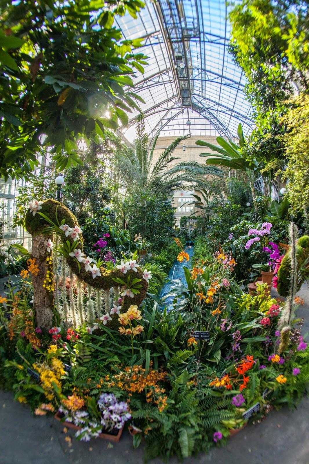 My Musings National Botanical Gardens