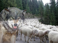 Pecore e lupi