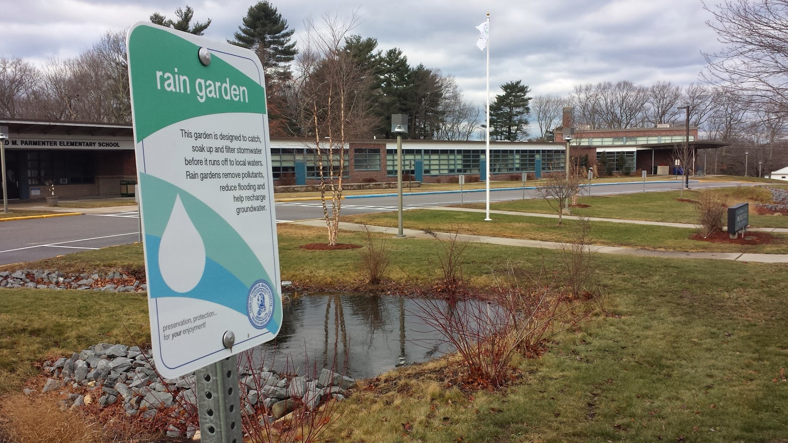 rain garden at Parmenter School