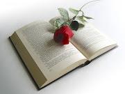 En el ámbito internacional, el Día del Libro fue propuesto por la Unión . (libro rosa)