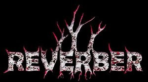 INTERVIEW TO REVERBER!!!